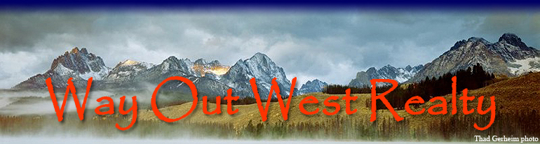 Challis Homes for Sale - Way Out West Realty